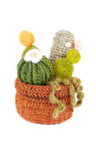 Gestrickte Kaktusblume mit Blüte im Topf Stockbild