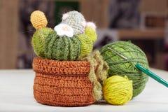 Gestrickte Kaktusblume mit Blüte im Topf und im Zubehör für das Stricken Lizenzfreies Stockfoto