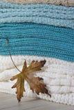 Gestrickte woolen Strickjacken mit Blatt Lizenzfreies Stockfoto