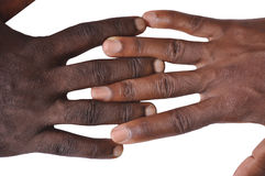 Gesture of fingers and hands. The gesture of the fingers and hands is a veritable language, and may be a part of non-verbal communication which may be used in Stock Photo