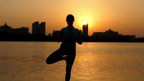 The Gesture Namaste at Sunset. Girl Practice Yoga stock footage