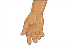 Gesture open palm. Hand gives or receives. Vector illustration on white background.  Royalty Free Stock Photo