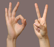Gesture set 2. Female hands showing okay and victory gestures Royalty Free Stock Photography