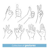Gestures of human hands. Gestures of different human hands Stock Photography