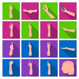 Gestures and their meaning flat icons in set collection for design.Emotional part of communication vector symbol stock. Illustration Stock Photos