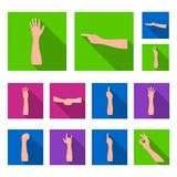 Gestures and their meaning flat icons in set collection for design.Emotional part of communication vector symbol stock. Illustration Royalty Free Stock Photos