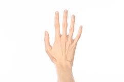 Gestures topic: human hand gestures showing first-person view isolated on white background in studio. Gestures topic: human hand gestures showing first-person Royalty Free Stock Images