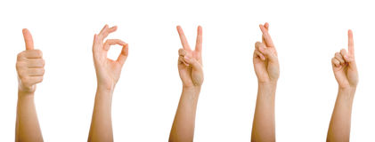 Gesturing Hands. Arms Raised Showing Various Signs on white background Royalty Free Stock Photo
