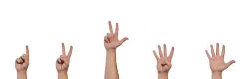 Gesturing hands. Hands showing numbers from one to five Royalty Free Stock Photos