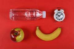 Gesund, Schulnahrung, ciabatta, Nahrung, reines Wasser, ein Sandwich, ein Apfel lizenzfreie stockbilder