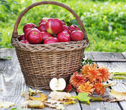 Gesunde Äpfel Lizenzfreies Stockbild