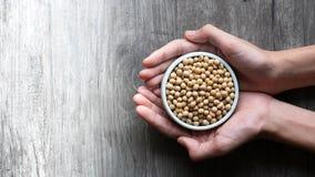 Gesunde Bohne für Nahrung stockfotografie