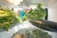 Gesunde Diät: Ein Hand-Ergreifungssellerie vom offenen Kühlschrank voll von Grüns lizenzfreie stockbilder