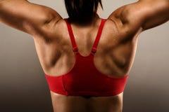 Gesunde Eignung-Frau, die ihre Rückenmuskel zeigt Stockfotos