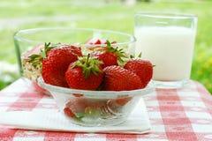Gesunde Erdbeeren Lizenzfreie Stockbilder