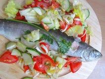 Gesunde Fische lizenzfreie stockbilder