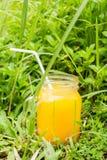 Gesunde Lebensart Energie von der Natur Ökologischer Mangosaft Lizenzfreie Stockfotografie