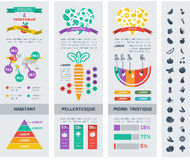 Gesunde Lebensmittel Infographic-Schablone Lizenzfreies Stockfoto