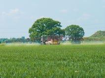 Gesunde Lebensmittelproduktion Lizenzfreie Stockfotos