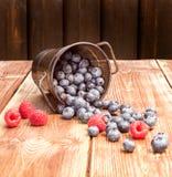 Gesunde Mischfrucht, Blaubeere Frische Beeren, Brombeere, Raspel Lizenzfreie Stockfotos