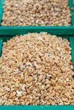 Gesunde Nahrung Acajounüsse als Lebensmittelhintergrund Stockfoto