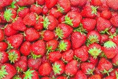 Gesunde Nahrung, Hintergrund. Erdbeere Stockbild