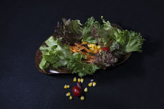 Gesunde Nahrung Säubern Sie Lebensmittel, frischen grünen Salat auf schwarzem Hintergrund Lizenzfreie Stockbilder