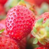 Gesunde natürliche Nahaufnahme der Erdbeere frische Nahrungsmittel Lizenzfreie Stockfotografie