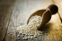 Gesunde Quinoasamen lizenzfreie stockfotografie