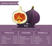 Gesunde Sammlungs-Früchte Stockfotos