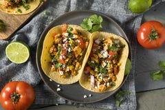 Gesunde selbst gemachte Sofritas-Tofu-Tacos lizenzfreie stockbilder