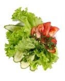 Gesunder Gartensalat Lizenzfreie Stockbilder