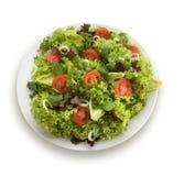 Gesunder Gartensalat Lizenzfreies Stockfoto