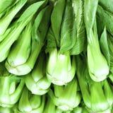 Gesunder Lebensmittelhintergrund des grünen Salats Gemüse auf lokalem Markt Lizenzfreies Stockfoto