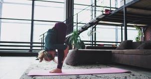 Gesunder Lebensstil für eine junge Dame morgens, welche zu Hause die Yogaübungen stehen in Krieger eine Übung übt stock footage