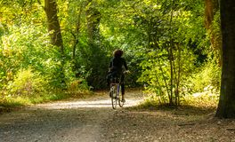 Gesunder Lebensstil Frau reitet ein Fahrrad in einem Weg von Tiergarten-Park, Berlin, Deutschland Feld des grünen Grases gegen ei lizenzfreie stockfotografie
