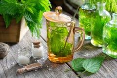 Gesunder Nesseltee, Flaschen der Infusion, Nesselanlagen und Flasche homöopathische Kügelchen lizenzfreies stockfoto