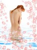Gesunder Redhead im blauen Wasser Stockbilder