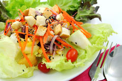Gesunder Salat. Lizenzfreies Stockfoto