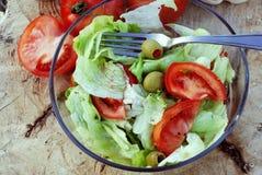 Gesunder Salat Lizenzfreie Stockfotos