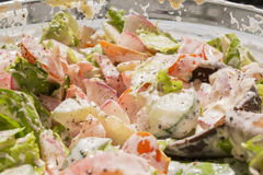 Gesunder Salat des Frühlingsgemüses Stockfotografie