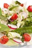 Gesunder Salat mit Bok Choy Lizenzfreie Stockfotografie