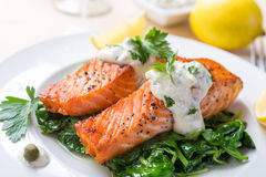 Gesunder Salmon Steak Lizenzfreies Stockfoto