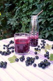 Gesunder Smoothie von der Beere des Vitamingetränks der schwarzen Johannisbeere, Sommernachtischkonzept Lizenzfreie Stockbilder