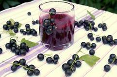 Gesunder Smoothie von der Beere des Vitamingetränks der schwarzen Johannisbeere, Sommernachtischkonzept Lizenzfreie Stockfotos
