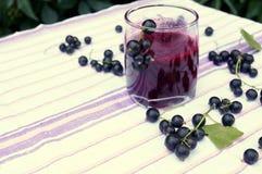 Gesunder Smoothie von der Beere des Vitamingetränks der schwarzen Johannisbeere, Sommernachtischkonzept Lizenzfreies Stockbild