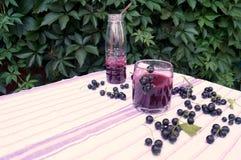 Gesunder Smoothie von der Beere des Vitamingetränks der schwarzen Johannisbeere, Sommernachtischkonzept Stockfotos