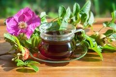 Gesunder Tee von dogrose Beeren Hypericum perforatum ist gerade, wie wirkungsvoll, wenn es Tiefstand behandelt Lizenzfreies Stockbild