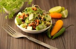 Gesunder Veg-Salat Lizenzfreie Stockfotos