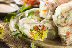 Gesunder vegetarischer Frühling Rolls Lizenzfreies Stockfoto